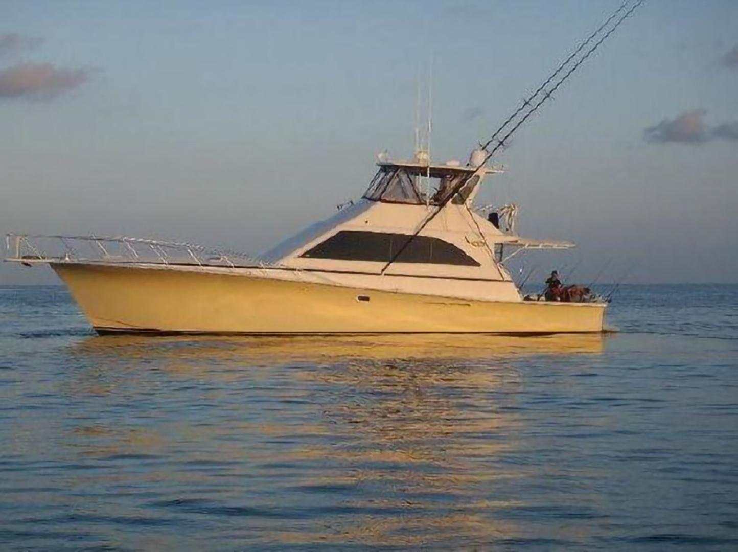58' Ocean Yachts 1991 Convertible T Back