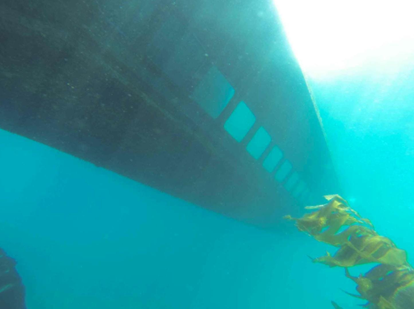 2000 Commercial 65' semi-submersible Passenger Vessel  | Picture 3 of 15
