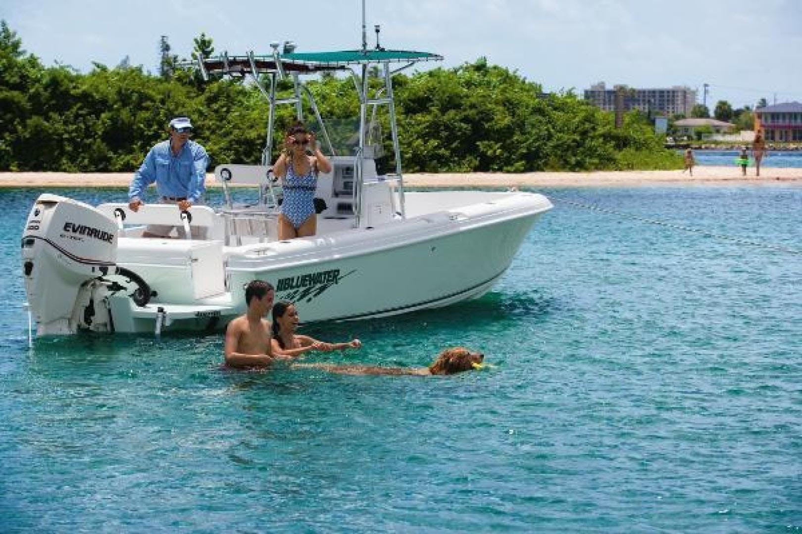 2020 Bluewater Sportfishing 22' 2150 Bluewater Sportfishing 2150 | Picture 3 of 4