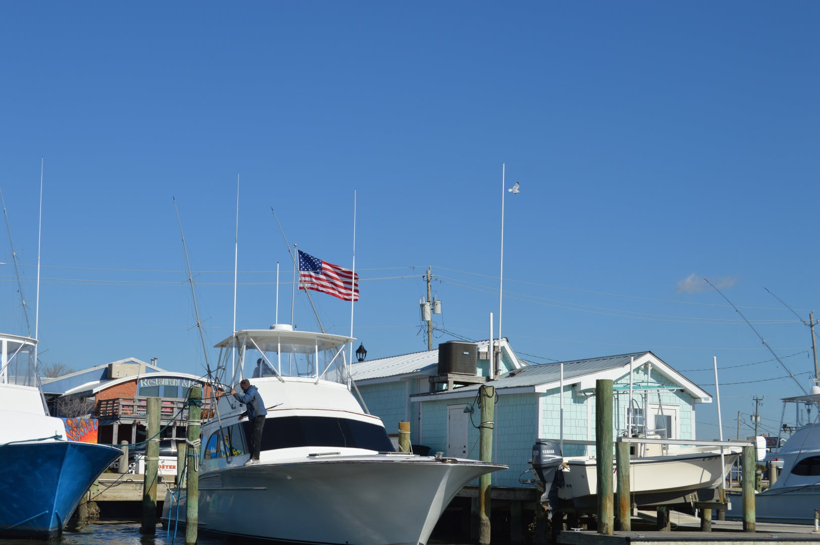 1986 Buddy Davis 47' 47 Sportfish Convertible Rooster | Picture 6 of 71