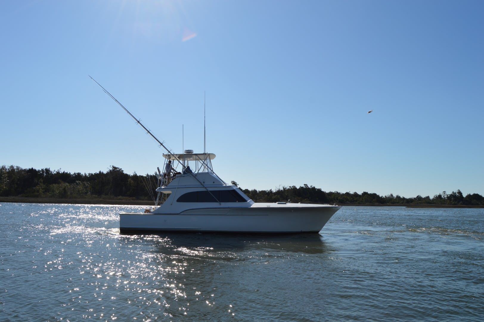1986 Buddy Davis 47' 47 Sportfish Convertible Rooster | Picture 5 of 71