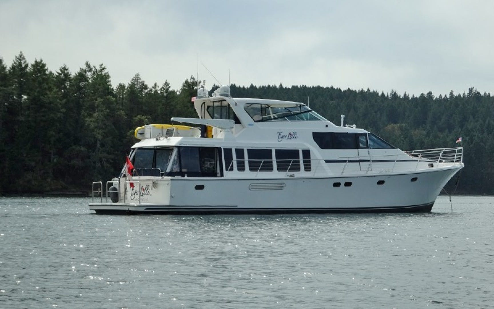 2004 Pacific Mariner 70' 65 Diamond TIGER LILLI NAME RESERVED | Picture 2 of 51